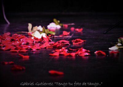 torbellino de poemas tangueros